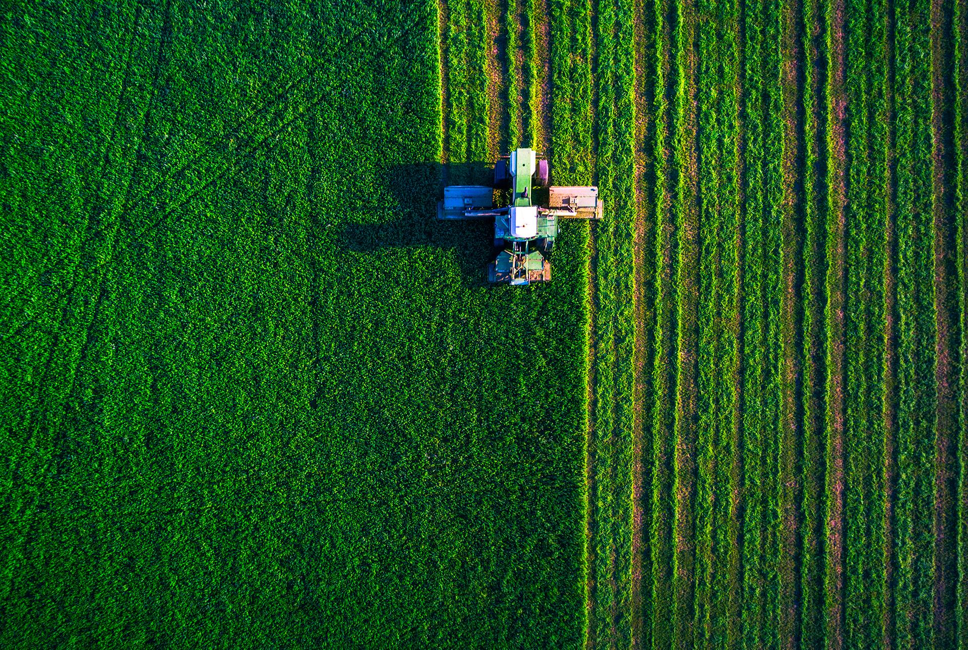 AGRICULTURAL & RURAL
